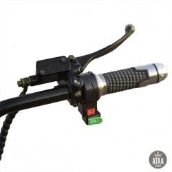 Patinete eléctrico Biplaza CityCoco Black 60v ATAA CARS PATINETES