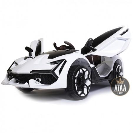 ATAA F1 Racing