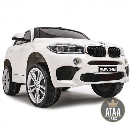 BMW X6M batería12v