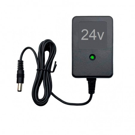 Cargador coche eléctrico para niños 24V