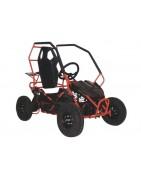 Voitures électriques pour enfants et buggys à batterie 36V